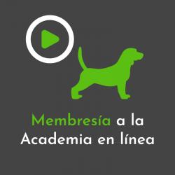 Membresía Academia en línea