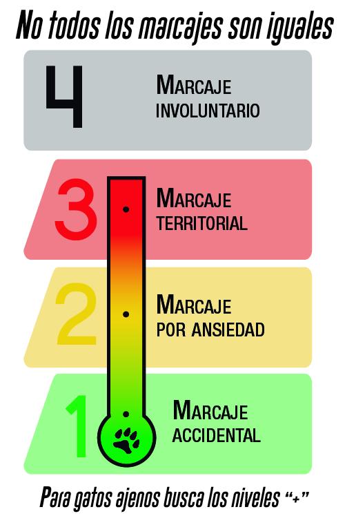 Termometro_Marcaje Interiores de Gatos.jpg